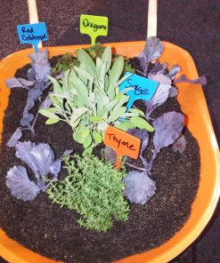 Twigz Plant Labels