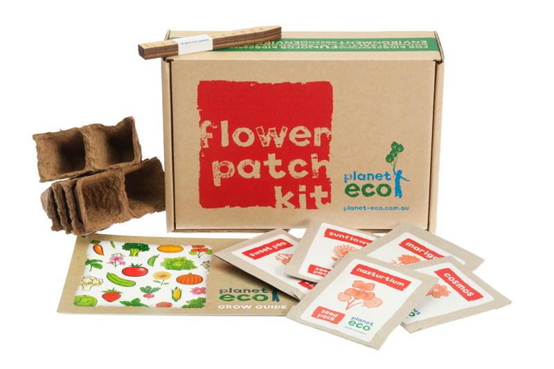 flower patch kit gardening 4 kids