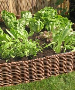 Salad and Vegetable Planter with Willow Hurdle