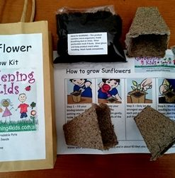 Grow Kit - Just Add Water!