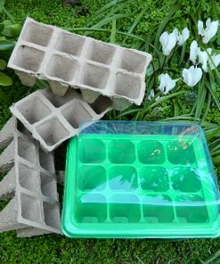 Mini Greenhouse with Biodegradable Pots and Seeds